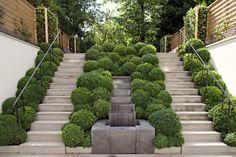 Michaelis Boyd Associates residential designed garden in Kensington. Topiary Garden, Garden Art, Formal Gardens, Outdoor Gardens, Kensington, Garden Stairs, Classic Garden, Garden Architecture, Garden Features
