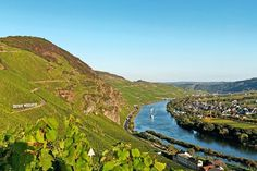 A two-day journey through the Rheingau and Moselle is a sweet trip, with wines that trump even the most stunning of vistas.