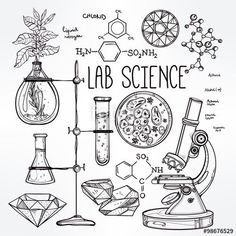 Hand drawn science beautiful vintage lab icons sketch set Poster Vector illustration Poster Back to School Poster Doodle lab equipment PosterBiology, geology alchemy, chemistry, magic, tattoo elements Poster. Chemistry Quotes, Chemistry Posters, Chemistry Art, Chemistry Drawing, Chemistry Basics, Chemistry Projects, Chemistry Worksheets, Teaching Chemistry, Chemistry Experiments