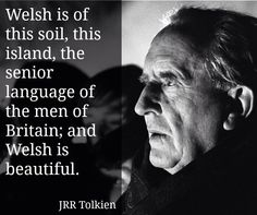 Tolkein used Welsh to create the Sindarin language of the elves. I hope to see this country (which is a proud part of my heritage) someday. Welsh Words, Welsh Language, Celtic Nations, California Shirt, Retro Girls, Cymru, Aunt Gifts, Jrr Tolkien, Swansea