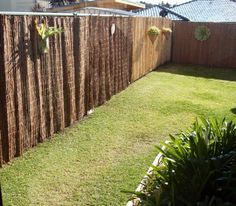 Privacy Screen for Fence . Privacy Screen for Fence . No Drill solution to Hang Screen Fencing On Colorbond Patio Fence, Backyard Privacy, Backyard Fences, Garden Privacy, Pool Fence, Privacy Screens, Trellis Fence Panels, Metal Fence Panels, Fence Options