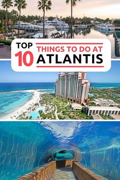 10 Top Things to do in the Atlantis Hotel Bahamas Resort Atlantis Resort Bahamas, Bahamas Resorts, Bahamas Honeymoon, Bahamas Beach, Bahamas Vacation, Bahamas Cruise, Nassau Bahamas, Vacation Trips, Vacation Spots