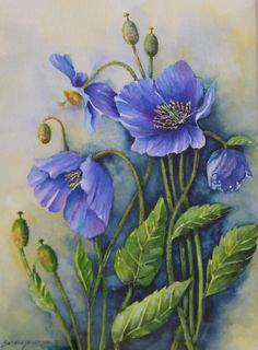 Traditional Watercolour - Sandra Henderson