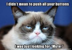 Trendy Ideas for memes humor espanol grumpy cat Grumpy Cat Quotes, Funny Grumpy Cat Memes, Funny Animal Jokes, Cat Jokes, Cute Funny Animals, Funny Cats, Cat Memes Hilarious, Scary Funny, Stupid Jokes