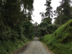 Reserva Ecológica Río Blanco. Manizales, Colombia Country Roads, White People, Places