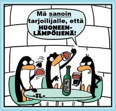 Here Are Some Of The Funny Problems Penguins Deal With Everyday - World's largest collection of cat memes and other animals Penguin Awareness Day, Flightless Bird, Cat Memes, Penguins, Quotations, Sayings, Comics, Funny, Wine Meme