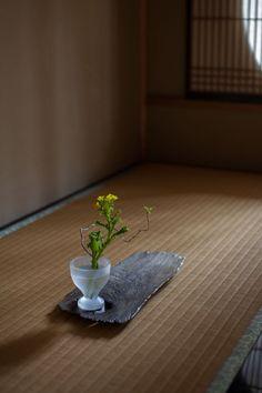 瀬沼健太郎 Works 2015spring | panorama                                                                                                                                                                                 もっと見る