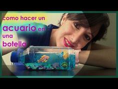 acuario artificial en botella - YouTube
