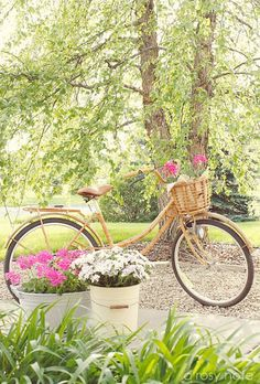 One day I will get a fabulous bike with a straw basket!