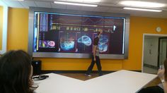 Swansea Uni researchers Dr Emily Shepard and Edward Grundy presenting in the visualisation suite at the Swansea Lab for Animal Movement (SLAM).