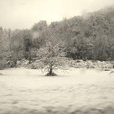 La neige à Uriage les Bains, Isère, France.