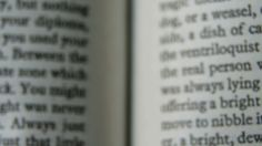 I went to the medical library near my house and scanned the autism pages from the DSM 5.This post is the beginning of a series of posts about what the DSM 5 autism definition says.