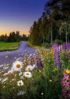 Beauty of Nature. Relax with this nature photo. Beautiful World, Beautiful Places, Beautiful Scenery, Landscape Photography, Nature Photography, Photography Flowers, Science And Nature, Nature Pictures, Amazing Nature