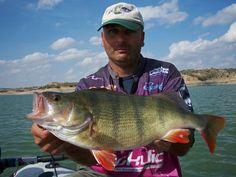 Perch Fishing - Team Relax Spain