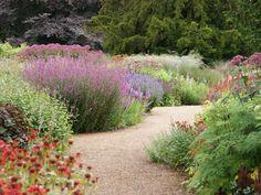 Piet Oudolf, Public Garden ~ Trentham Estate, Trentham, Stoke-on-Trent, Staffordshire, UK  _/\/\/\/\/\_