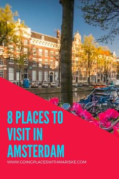 Explore Amsterdam with Trafalgar With the buzz of a big city and charm of a little village, let Amsterdam's tree-lined canals captivate you. Amsterdam Canals, Amsterdam Travel, Europe Travel Tips, Italy Travel, Amsterdam Holidays, Passport Travel, Travel Essentials, Travel Pictures, Netherlands