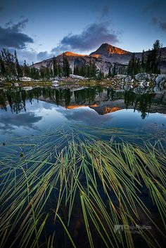 30 Mind-Blowing Nature Photography by Chip Phillips | Ginva http://www.chipphillipsphotography.com/