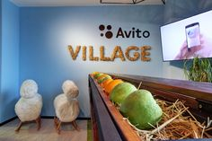 Avito II by Meandre. Moscow.  Cool reception with desk of woodbox with fruits.