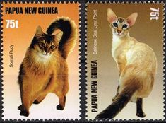 Papua New Guinea cats stamps