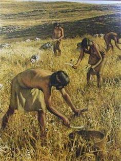 How About a New Theory of Evolution with Less Natural Selection? History Of Agriculture, Agriculture Books, Paleolithic Art, Prehistoric Age, Theory Of Evolution, Human Evolution, Early Humans, Primitive Survival, Archaeology News