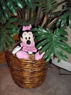 Disney Dreamin...Hide Minnie Mouse around the house for kids to find everyday leading up to the trip! This starts tomorrow- how FUN!