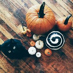 Black kitty cats mean October!