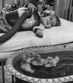 Ducklings used as therapy animals, 1956. 32 extraordinary historical photographs which will leave you stunned