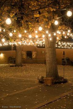 Outdoor Wedding Lighting Ideas String lighting with outdoor fireplace S Backyard Lighting, Outdoor Lighting, Wedding Lighting, Lighting For Weddings, Lights For Backyard, Outside Lighting Ideas, Driveway Lighting, Event Lighting, Landscape Lighting