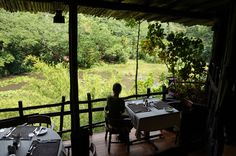 SHIMBA HILLS-Casa na árvore-Maravilhoso Lodge do Quenia.