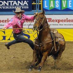 Calf Roping Rodeo Cowboys Etc Pinterest Rodeo