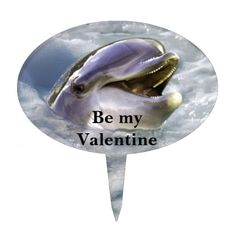 A dolphins best smile be my valentine