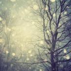 a winters tale http://poppytalkhandmade.com/table103
