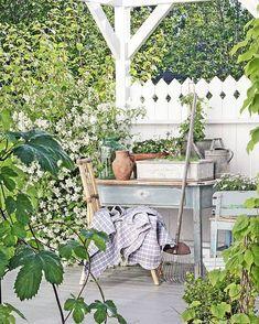 Nyter en herlig kveld med Sommar med Ernst på tv'n i kveld! og før vi trakk oss inn i kveld tok jeg noen bilder fra hagen... Så grønt og…