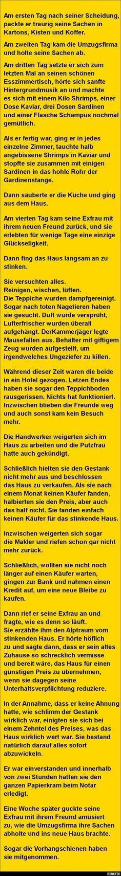 Am ersten Tag nach seiner Scheidung..   DEBESTE.de, Lustige Bilder, Sprüche, Witze und Videos