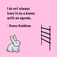 Bunny with an Agenda