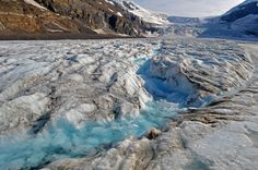 athabasca glacier Freedom Travel, Banff, North America, National Parks, Gallery, Places, Nature, Pictures, Ice