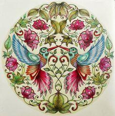 Inspirational coloring pages from Secret Garden, Enchanted Forest and other coloring books for grown-ups. Páginas inspiradoras dos livros Jardim Secreto, Floresta Encantada e outros livros de colorir para adultos beija flor