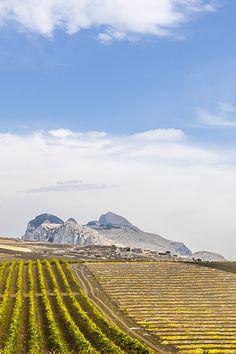Sizilien im Winter - herrlicher Ausblick bei Ficuzza: https://www.trip-tipp.com/sizilien/ausfluege-natur/ficuzza.htm #sizilien #sicily #sicilia #wandern