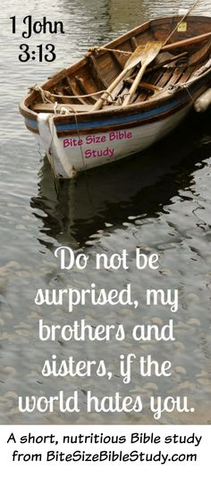 We get confused at times thinking people will like us if we act like Jesus. This 1-minute devotion and Bite Size Bible study offer clear quotes from Jesus about the truth in this matter.