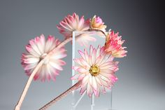 Bezel with daisies, Transparent flower, Unusual jewelery for hair from Elena Crystal Flora, (Crystal Flora, hair accessory, kanzashi, of synthetic resin and wire, American flowers, it is not kanzashi by Sakae, luxury jewelry, wedding decorations, wedding flowers, transparent flowers)