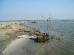 Dunarea si Marea Neagra Danube River, Romania, Beach, Water, Outdoor, Gripe Water, Outdoors, The Beach, Outdoor Games