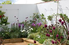 Sharon Hockenhull award winning garden, Be Fruitful, at RHS Tatton Park Flower Show Featuring the Green Wall System as an espalier support. Tatton Park Flower Show, Rhs Flower Show, Circular Lawn, Wire Trellis, Fruit Trees, Close Image, Garden Projects, Eco Friendly, Exterior