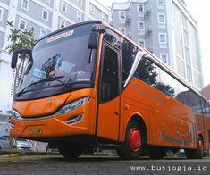 Sewa Bus Jogja Seat 50