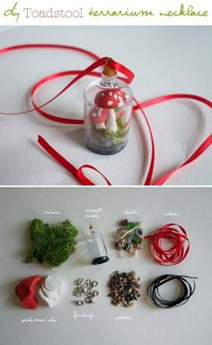 Blessed Not Lucky: DIY Toadstool Terrarium necklace Tutorial