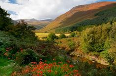 The Isle of Arran: One Little Island With Everything Scotland Has to Offer Isle Of Arran, Places In Scotland, Scottish Castles, Castle Ruins, Glasgow Scotland, Little Island, Rock Pools, Sandy Beaches, Beautiful Landscapes