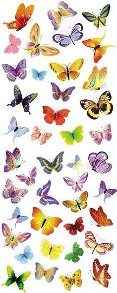 Mariposas de colores diferentes