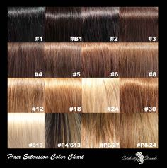 Shades Of Medium Brown Hair Color Chart Noskbh