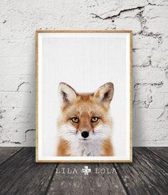 Impresión de Fox, bosques Fox arte de la pared, decoración cuarto de niños, vivero animales para imprimir, impresión arbolados Fox animales, Fox foto, descarga Digital instantánea