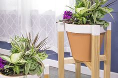 Put your favorite plants on a pedestal by building an attractive stand. Both the low and high versions hold a 12.5
