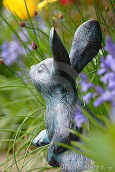 Bunnies love my Secret Garden